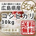 【送料無料】【新米】【広島県産】28年産広島県産新米コシヒカリ30kg玄米 生産農家が販売するお米