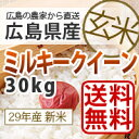 【送料無料】【新米】【広島県産】28年産広島県産新米ミルキークイーン30kg玄米 生産農家が販売するお米