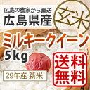 【送料無料】28年産新米広島県産ミルキークイーン5kg『玄米』*北海道・沖縄別途送料500円が掛かります