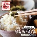 【送料無料】【新米】【広島県産】30年産あきたこまち10kg玄米