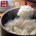 Yamagata5