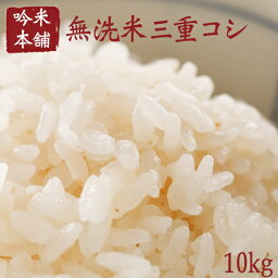 <strong>新米</strong> <strong>無洗米</strong> 10kg 送料無料 コシヒカリ 5kg×2 三重県産【令和元年産】【北海道・沖縄・離島は送料別途必要】