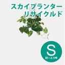 プランター 【スカイプランター・リサイクルド「ホワイト/Sサイズ」/ボスケ】