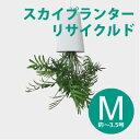 プランター 【スカイプランター・リサイクルド「ホワイト/Mサイズ」/ボスケ】