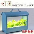 LED水耕栽培器 【Akarina05 COX(コックス)/灯菜 型番:OMA05】