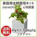 水耕栽培 キット おしゃれ 心知菜園 (ホワイト:プチトマト...
