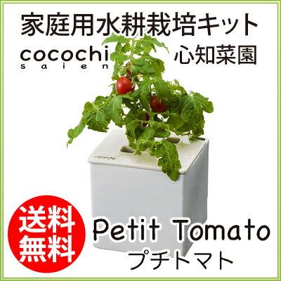 水耕栽培キット【心知菜園(ホワイト:プチトマトの種付き)】ハイポニカの協和