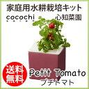水耕栽培 キット おしゃれ 心知菜園 (ピンク:プチトマトの...