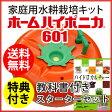 ハイポニカ 水耕栽培キット【ホームハイポニカ601(果菜ちゃん) + 教科書がセットの水耕栽培スターターキット】