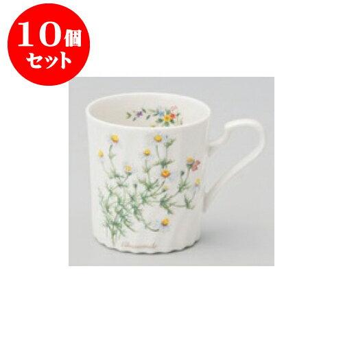 10個セットマグカップカモミールマグ[8x86cm280cc]|マグマグカップコーヒー紅茶ティー人気