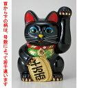常滑焼招き猫 黒手長小判猫10号(左手) [ 24 x 25...
