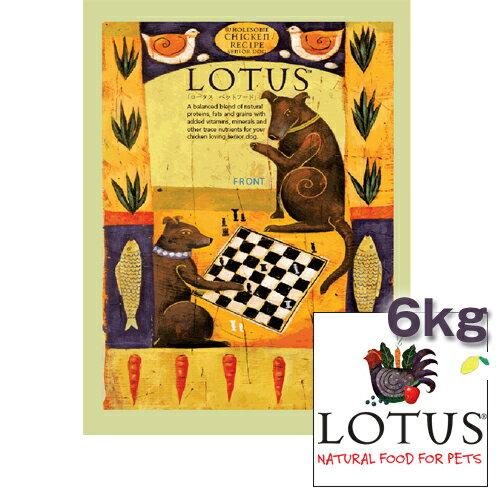 ロータス シニア チキンレシピ 小粒 6kg LOTUS ワンちゃん用 高齢犬期