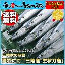三陸産 生秋刀魚 140g以上×20尾 シャーベットとブロックのダブル氷投入により抜群の鮮度でお届け