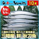 三陸産 鮮 秋刀魚 10尾 1尾140g以上 食べ方ガイド付...