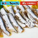 瀬戸内海広島産 お刺身小いわし 40gに20枚前後入り 鰯 イワシ かたくちいわし 鮮魚 あす楽