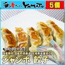 手包みジャンボ餃子 1つ60gのジャンボサイズが5個入 冷凍食品 おつまみ 惣菜 ぎょうざ ギョウザ