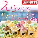 【送料無料】ギフト・プレゼント・内祝に『ジェラート12個 選...