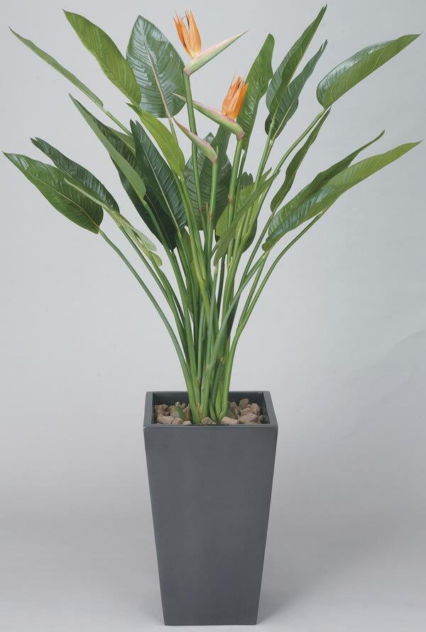 【直送】【送料無料】光の楽園 アートストレチア花付1.6m 115C850 本物のような精巧な作りで人気の光触媒加工の人工観葉植物。オフィスやストア、開店・開業のお祝い、ギフト・ご贈答ギフトに!!