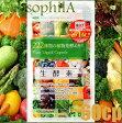 GypsophilA ジプソフィラ 生酵素 222種類の植物発酵エキス 60粒 飲む酵素