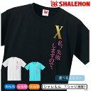 おもしろTシャツ ドクターX 【私、失敗しますので。】【選べる3色】私、失敗しないので。パロディ 【楽ギフ_包装】 02P02Sep17