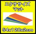 【受注生産品】【エクササイズマット】トーエイライト エクササイズマット120 H-7469