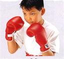 【受注生産品】【ボクシンググローブ キッズ】Winning(ウイニング)ボクシング ジュニア用パンチンググローブ JR-200