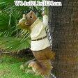 探偵リス【木登り りす 栗鼠】