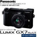 【送料無料】 パナソニック DMC-GX7MK2K-K LUMIX GX7 MarkII 標準ズームレンズキット ブラック [1600万画素/強力手ブレ補正/4K動画撮影/スマートフォン連携・Wi-Fi対応/マイクロフォーサーズ/ミラーレス一眼/Panasonic]