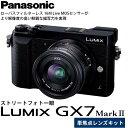 【送料無料】 パナソニック DMC-GX7MK2L-K LUMIX GX7 MarkII 単焦点ライカDGレンズキット ブラック [1600万画素/強力手ブレ補正/4K動画撮影/スマートフォン連携・Wi-Fi対応/マイクロフォーサーズ/ミラーレス一眼/Panasonic]