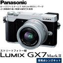 【送料無料】 パナソニック DMC-GX7MK2L-S LUMIX GX7 MarkII 単焦点ライカDGレンズキット シルバー [1600万画素/強力手ブレ補正/4K動画撮影/スマートフォン連携・Wi-Fi対応/マイクロフォーサーズ/ミラーレス一眼/Panasonic]