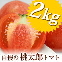 【送料無料】桃太郎完熟トマト(約2kg)箱入りセット兵庫県 姫路市 網干産