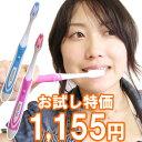 【45%OFF】携帯用音波歯ブラシ/ソニックセル「毎分2万4千回振動する電動歯ブラシ」