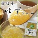 伊豆フェルメンテ【低糖度40度】愛媛県産柚子ゆずジャム300g