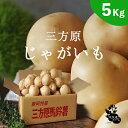 三方原馬鈴薯【5kg】じゃがいも Lサイズ玉 2019年【産地直送】男爵 マスオさんファー