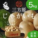 スーパーSALE【ポイント2倍!!】三方原馬鈴薯【5kg】じゃがいも Lサイズ玉 2018年【産