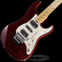 SCHECTER 《シェクター》 EX-V-CUSTOM FRT HM/HM/4AG (Black Cherry)【特価】