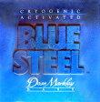 Dean Markley 《ディーンマークレー》 Blue Steel Bass 45-100