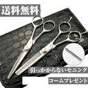 【送料無料】日本の鋏専門メーカー 鍛造仕上 引っかからないスキ鋏と鋏の2本セット/DEEDS PP-02 シザー セニング セット 美容師 理容 理容師 散髪 はさみ シザー セニング