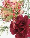 お母さん、ありがとうカード 【RCP】ギフト お取り寄せ グルメ 内祝い お歳暮 プレゼント