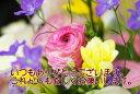 ありがとうカード 花束 【RCP】ギフト お取り寄せ グルメ 内祝い お歳暮 プレゼント