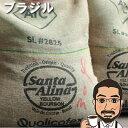 ショッピングランキング コーヒー豆 ブラジル・マイルド(サンタアリーナ農園パルプドナチュラル)100g【中煎り コーヒー コーヒー豆 お試し コーヒー豆 おすすめ レギュラーコーヒー ブラジルコーヒー 豆 Brazil coffee】