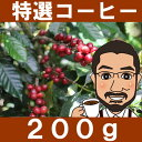 コーヒー グァテマラ・ラ・クプラ ブルボン フリーウオッシュ ロースト
