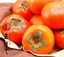 富有柿4kg(13〜14玉)