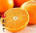 【愛媛の新3大柑橘(紅まどんな、せとか、甘平)の主峰!愛媛県産】せとか約2kg(約7〜9玉位)【RCP】【smtb-KD】