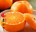 【愛媛の新3大柑橘(紅まどんな、せとか、甘平)の最新作!愛媛県産】甘平約1.5kg(5〜7玉位)【RCP】【smtb-KD】