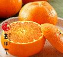 【愛媛の新3大柑橘(紅まどんな、せとか、甘平)の最新作!愛媛県産】甘平約2.5kg(9〜12玉位)【RCP】【smtb-KD】