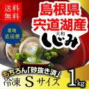 宍道湖 しじみ Sサイズ 1kg(1...