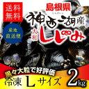 【神西湖 しじみ Lサイズ2kg(2キロ)】島根県を代表するもう一つのしじみ産地、神西湖