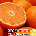 【特別栽培・有機肥料100%】定番 有田みかん5kg  ★ご...