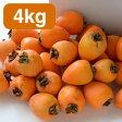 日本一の生産地愛媛丹原のあたご柿 干し柿用渋柿 4kg 11個から20個